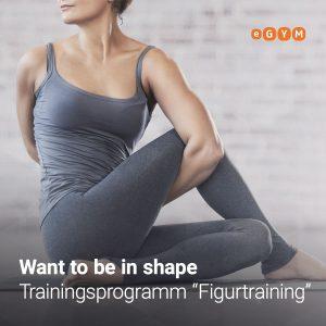 Eine Kombination aus Kraftausdauertraining und Muskelaufbau für eine sanfte Körperdefinition.