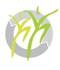 Logo Osteo ohne Schrift